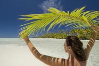 Fakarawa, Tuamotu Archipelago, French Polynesia, Pacific Islands, Pacific 20025359065| 写真素材・ストックフォト・画像・イラスト素材|アマナイメージズ