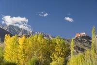 Matho gompa (monastery) and Stok-Kangri massif, Ladakh, Indian Himalaya, India, Asia 20025359784| 写真素材・ストックフォト・画像・イラスト素材|アマナイメージズ