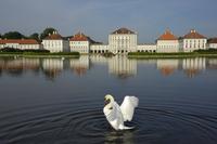 Schloss Nymphenburg, Munich (Munchen), Bavaria, Germany, Europe 20025359928| 写真素材・ストックフォト・画像・イラスト素材|アマナイメージズ
