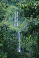 Waterfall on the northern slopes of 3726m Mt Rinjani volcano, near Senaru, Lombok, Indonesia 20025360627  写真素材・ストックフォト・画像・イラスト素材 アマナイメージズ