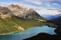 Peyto Lake, Banff National Park, UNESCO World Heritage Site, Rocky Mountains, Alberta, Canada, North America 20025361687| 写真素材・ストックフォト・画像・イラスト素材|アマナイメージズ