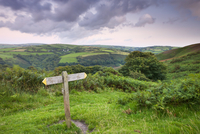 Footpath on Trentishoe down in Exmoor National Park, Devon, England, United Kingdom, Europe 20025361877| 写真素材・ストックフォト・画像・イラスト素材|アマナイメージズ