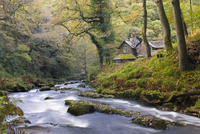 Watersmeet in the autumn, Exmoor National Park, Devon, England, United Kingdom, Europe