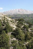 Bcharre, Qadisha Valley, UNESCO World Heritage Site, Lebanon, Middle East