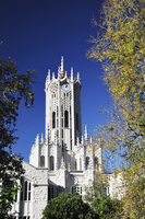 Clock Tower, University of Auckland, Auckland, North Island, New Zealand, Pacific 20025362736| 写真素材・ストックフォト・画像・イラスト素材|アマナイメージズ