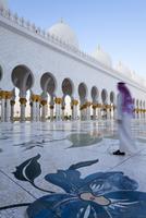 Sheikh Zayed Bin Sultan Al Nahyan Mosque, Abu Dhabi, United Arab Emirates, Middle East 20025363006| 写真素材・ストックフォト・画像・イラスト素材|アマナイメージズ