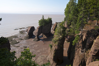 Hopewell Rocks and The Ocean Tidal Exploration Site, New Brunswick, Canada, North America 20025363033| 写真素材・ストックフォト・画像・イラスト素材|アマナイメージズ
