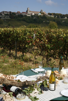 Wine in Vezelay, Yonne, Burgundy, France, Europe 20025363249| 写真素材・ストックフォト・画像・イラスト素材|アマナイメージズ