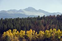 Aspen trees in autumn below Longs Peak, a mountain above 14000 feet, known as a 14er, Rocky Mountain National Park, Colorado, Un 20025363854| 写真素材・ストックフォト・画像・イラスト素材|アマナイメージズ