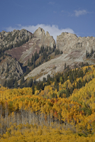 The Dyke with the fall colours, Grand Mesa-Uncompahgre-Gunnison National Forest, Colorado, United States of America, North Ameri