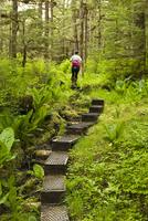 Hiking in the Ideal Cove area of Southeast Alaska, Alaska, United States of America, North America 20025364384| 写真素材・ストックフォト・画像・イラスト素材|アマナイメージズ