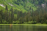 Walker Cove area of Misty Fjords National Monument Wilderness Area, Southeast Alaska, Alaska, United States of America, North Am 20025364392| 写真素材・ストックフォト・画像・イラスト素材|アマナイメージズ