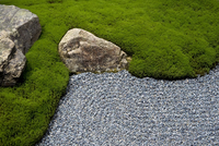 Carefully manicured moss highlights a rock garden at Sanzenin Temple in Ohara, Kyoto, Japan, Asia 20025364887| 写真素材・ストックフォト・画像・イラスト素材|アマナイメージズ