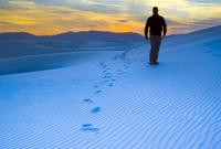 White Sands National Monument, New Mexico, United States of America, North America 20025364942| 写真素材・ストックフォト・画像・イラスト素材|アマナイメージズ