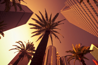 Downtown, Los Angeles, California, United States of America, North America