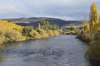 River Derwent, Bushy Park, Tasmania, Australia, Pacific 20025365756| 写真素材・ストックフォト・画像・イラスト素材|アマナイメージズ