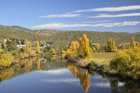River Derwent near New Norfolk, Tasmania, Australia, Pacific 20025365758| 写真素材・ストックフォト・画像・イラスト素材|アマナイメージズ