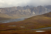 Mountains and tundra in fall color, Denali National Park and Preserve, Alaska, United States of America, North America