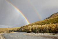 Rainbow with fall colors near King Mountain State Recreation Area and Chickaloon, Alaska, United States of America, North Americ 20025365862| 写真素材・ストックフォト・画像・イラスト素材|アマナイメージズ