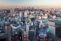 Elevated view of Shinjuku skyline from Shibuya, Tokyo, Japan, Asia 20025366092| 写真素材・ストックフォト・画像・イラスト素材|アマナイメージズ