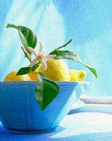 青い器に入ったレモン