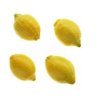 レモン 20026000228  写真素材・ストックフォト・画像・イラスト素材 アマナイメージズ