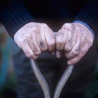 土がついた男性の手 20026003273| 写真素材・ストックフォト・画像・イラスト素材|アマナイメージズ