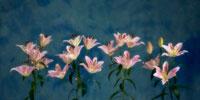 ユリ 20026003455| 写真素材・ストックフォト・画像・イラスト素材|アマナイメージズ