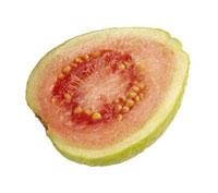 Psidium Guajava,Guava