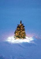 光り輝くクリスマスツリー