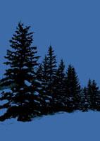 雪景色の道 20027000048| 写真素材・ストックフォト・画像・イラスト素材|アマナイメージズ