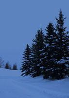 雪景色の道 20027000055| 写真素材・ストックフォト・画像・イラスト素材|アマナイメージズ
