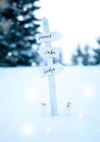 標識と雪だるま