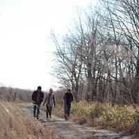 散歩をする20代の若者たち 20027000570| 写真素材・ストックフォト・画像・イラスト素材|アマナイメージズ