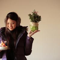 ケーキとツリーを持った20代女性