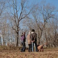散歩する若者たち 20027000725| 写真素材・ストックフォト・画像・イラスト素材|アマナイメージズ