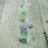 テーブルの上の野花 20027001048| 写真素材・ストックフォト・画像・イラスト素材|アマナイメージズ