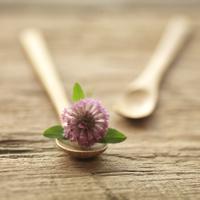 2つのスプーンと花