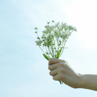 野花を持つ女性の手元