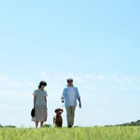 草原を歩く夫婦と犬 20027001358| 写真素材・ストックフォト・画像・イラスト素材|アマナイメージズ