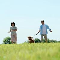草原を散歩する夫婦と犬