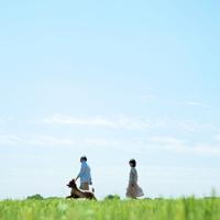 草原で犬と散歩するシニア夫婦 20027001376| 写真素材・ストックフォト・画像・イラスト素材|アマナイメージズ