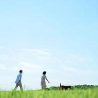 草原で犬と散歩するシニア夫婦 20027001378| 写真素材・ストックフォト・画像・イラスト素材|アマナイメージズ