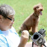 草原でカメラをいじる中高年の男性