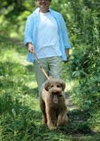 森の中を散歩する中高年男性と犬