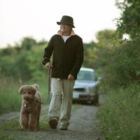 田舎道を散歩する中高年男性と犬 20027001472| 写真素材・ストックフォト・画像・イラスト素材|アマナイメージズ