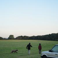 草原を散歩するシニア夫婦と犬
