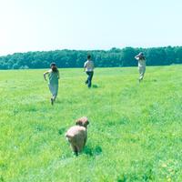草原を走る犬と女性達