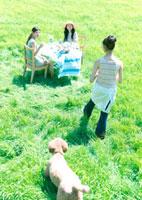 草原の中の食卓