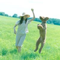 草原で遊ぶ女性と犬